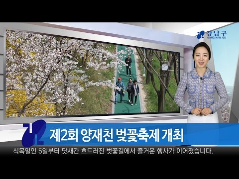 2017년 4월 첫째주 강남구 종합뉴스