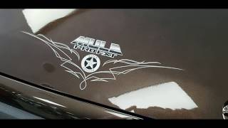 9. 2020 Kawasaki Mule PRO-FXT Street Legal!