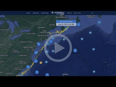 Introducing The New Ocearch Tracker.