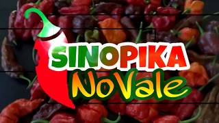 SINOPIKA NO VALE CAPITULO 4 PADRE HURTADO