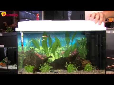 Aquarium biseauté noir Advance Led C 40 Aquatlantis 24 litres