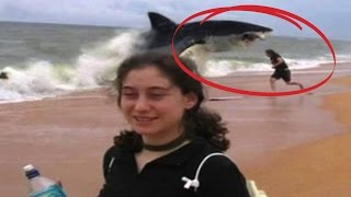 Top 10 Shark Attacks You Won't Believe