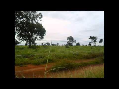 Fazendas a Venda Em Tocantins - (Abreulândia-TO)