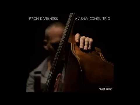 Avishai Cohen -