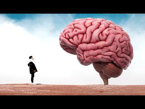 Alan Watts Audio: What If You Stopped Thinking All The Time?