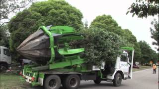 Tree Relocation Machine - Awesome!