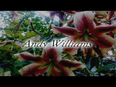 Tekst piosenki Andy Williams - Getting to Know You po polsku