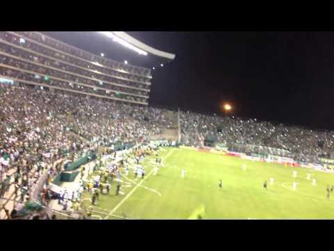 Deportivo Cali eliminando al nacional y el frente radical celebrando - Frente Radical Verdiblanco - Deportivo Cali