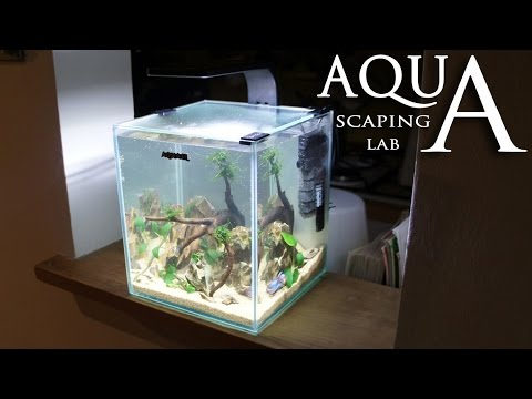 Aquascaping Lab - Tutorial Nano Cube Aquarium (size 20 x 20 x 25H 10L) Stone and wood style