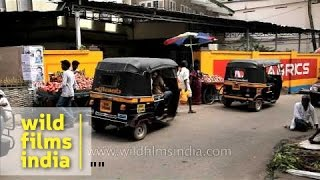 Kollam India  city pictures gallery : Street scene - Kollam, India