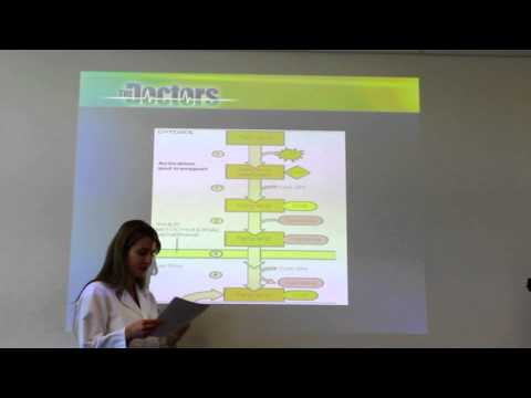 Lipid Catabolism