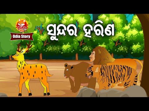 Sundar Harina - ସୁନ୍ଦର ହରିଣ    Odia Moral Story   Huke Hu TV
