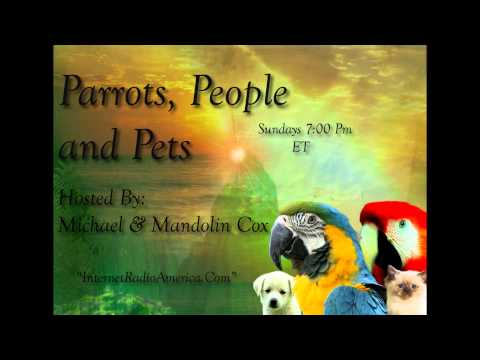 Parrots, People and Pets. Our 2nd World Wide Broadcast!