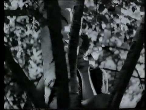 Mästerdetektiven Blomkvist 1947: Den Röda och Vita Rosen (видео)
