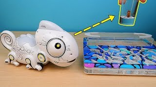 Video Робот Хамелеон Silverlit и Муравьи Феллахи против Таракана! alex boyko MP3, 3GP, MP4, WEBM, AVI, FLV Maret 2019