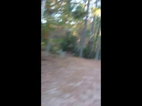 A great running trail virginia beach