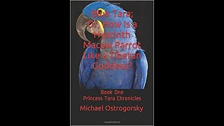 Blue Tara; Or, How Is a Hyacinth Macaw Parrot Like a Tibetan Goddess?