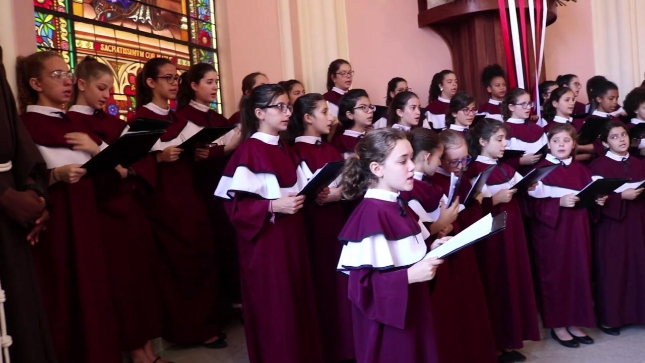 [Canarinhos de Petrópolis | Canto Popular de Angola]