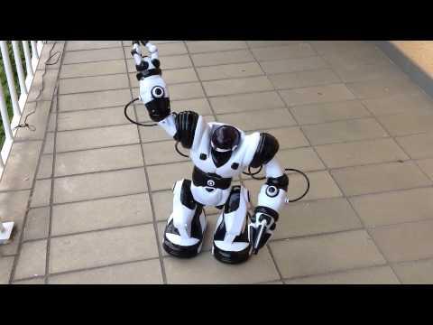 WowWee Roboter Robosapien 8081 beim Kampfsport