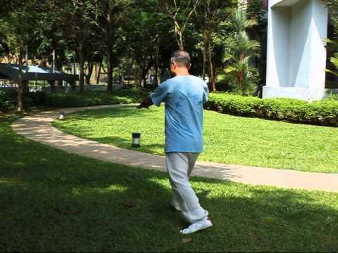 Video of Yang TaiChi40-3杨氏四十式太极拳3