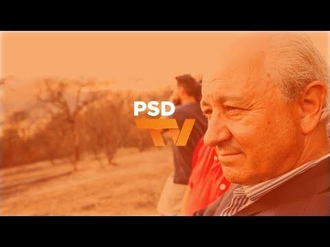 """""""Quando está a arder, o PSD só não ajuda se não puder, não faz oposição"""""""