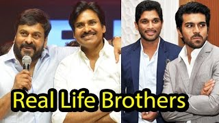 Video 10 South Indian Actors Who Are Real Life Brothers – Family Time! MP3, 3GP, MP4, WEBM, AVI, FLV April 2019
