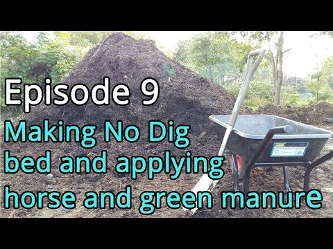 Episode 9 Making no dig bed and applying horse and green manure