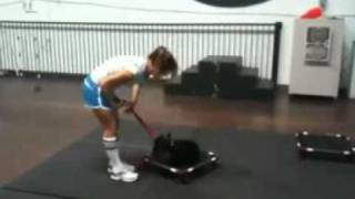 Dog Training - Out Of Control Small Dogs