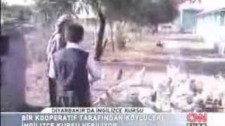 Yurdum Insani Diyarbakirda Ingilizce