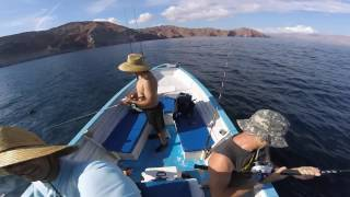 The boys take another annual fishing trip down to Baja. Bahia de los angeles yellowtail bite was HOT. See you guys next year!
