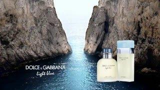 http://www.stagestores.com/store/product/dolce-gabbana-light-blue-eau-de-toilette-for-men/15285/