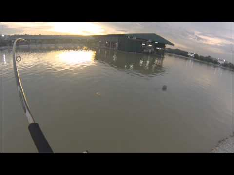 Natural Exotic Fishing Pond – Catfish No.9 on float (10.05.13)