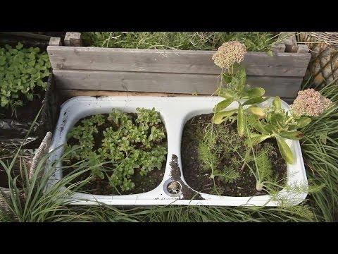 Garten- und Landschaftsbau: Sprechende Gärten - Die Berliner Urban Gardening Bewegung - Dokumentarfilm