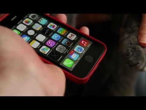 Dùng mèo kiểm tra tính năng mở khoá bằng vân tay trên iPhone 5S