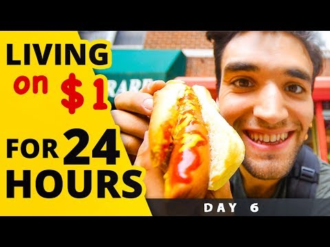 LIVING on $1 for 24 HOURS in NYC! (Day #6)