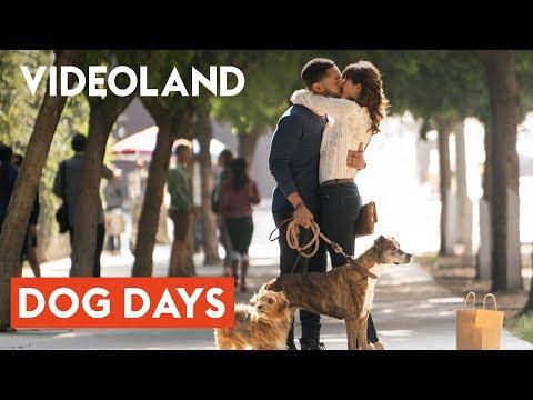 Dog Days | Net uit de bioscoop!