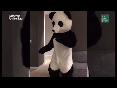 Patrice Evra met un costume de panda et danse pour faire passer un message