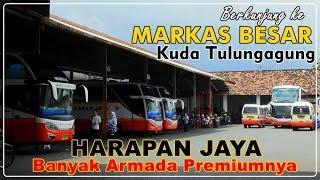 Video MARKAS BESAR PASUKAN KUDA Po. Harapan Jaya Tulungagung | Banyak Chasis Premium MP3, 3GP, MP4, WEBM, AVI, FLV Januari 2019