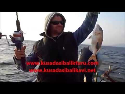 kuşadası balık turu
