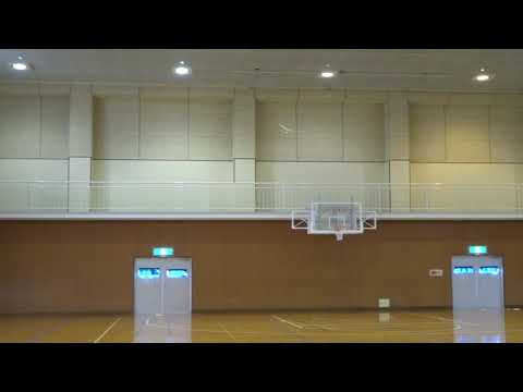 F1N Indoor Hand Launch Glider Category Ⅰ