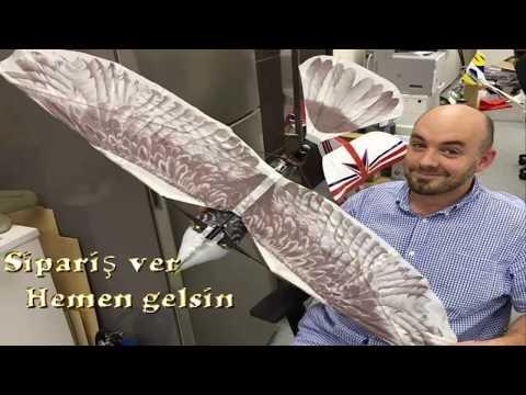Uzaktan kumandalı profesyonel büyük model kuş