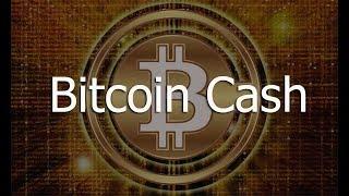 Bitcoin cash. Ledger nano. Это фиаско братан.
