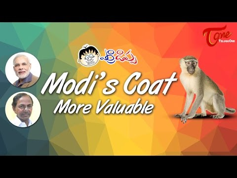 Modi Coat More Valuable