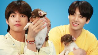 Video BTS Plays With Puppies While Answering Fan Questions MP3, 3GP, MP4, WEBM, AVI, FLV Mei 2018