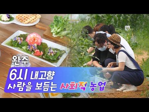 [KBS 6시 내고향] 사람을 보듬는 '사회적 농업' - 전북 완주