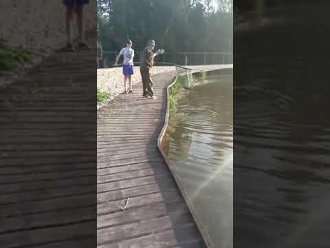 Видеоотчет о рыбалке за 20 августа 2021 г.
