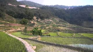 Yuanyang China  city pictures gallery : Terrazas de arroz de Yuanyang (China)