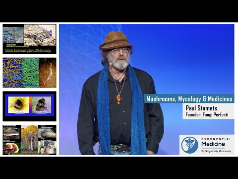 Paul Stamets: Mycology and Mushrooms as Medicines