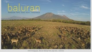 Baluran National Park | Wonderful Indonesia