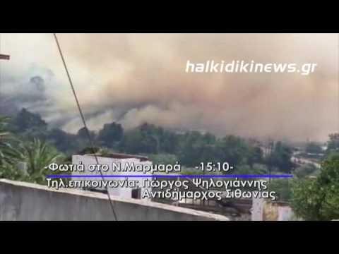 Video - Μεγάλη πυρκαγιά στη Στεφάνη Βοιωτίας